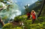 Genetička raznolikost Bosne i Hercegovine je nesagledivo bogata