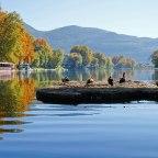 Kako su hidroelektrane uništile život u Bosni i Hercegovini…