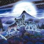 Planine – sinonim zdravlja i dugovječnog života (drugi dio)