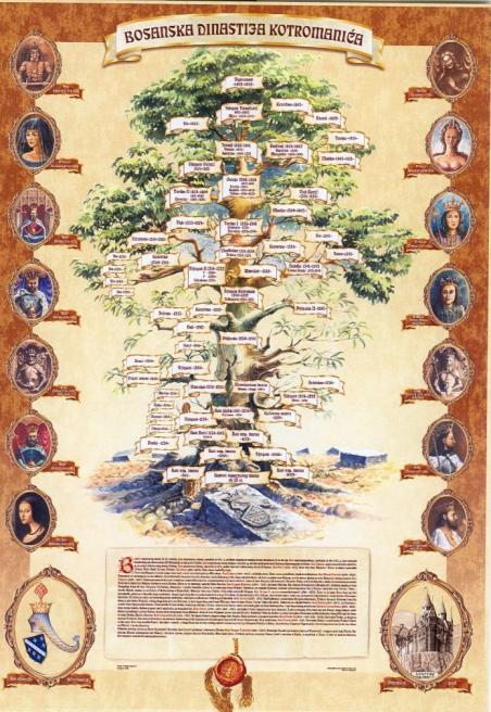 bosansko-kraljevsko-stablo1
