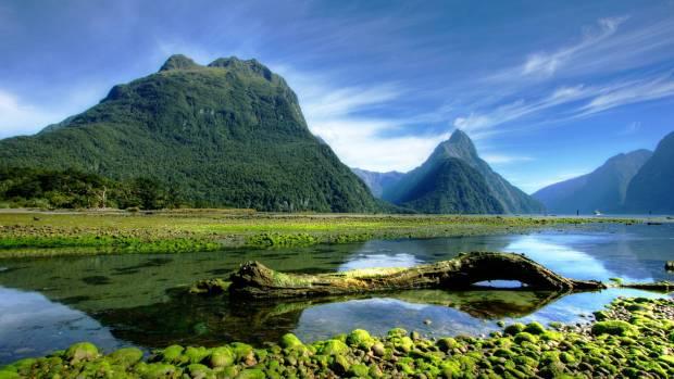 55. Pejzaž sa Novog Zelanda